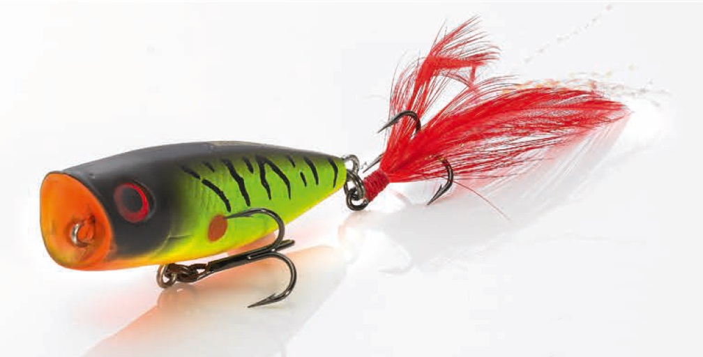 Wobler Perch Popper